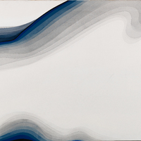 Bold black and dark blue lines creating a wave pattern from the upper left and disappearing in the upper center before reappearing in the top right corner. The pattern also circles the left side and appears in the bottom left. Overlapping lines of increasingly lighter shades of grey move away from the darkest lines while also mirroring their shape.