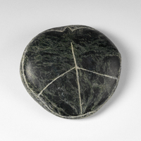 A smooth, round stone with green and black ripples. The other side looks like a beetle shell.